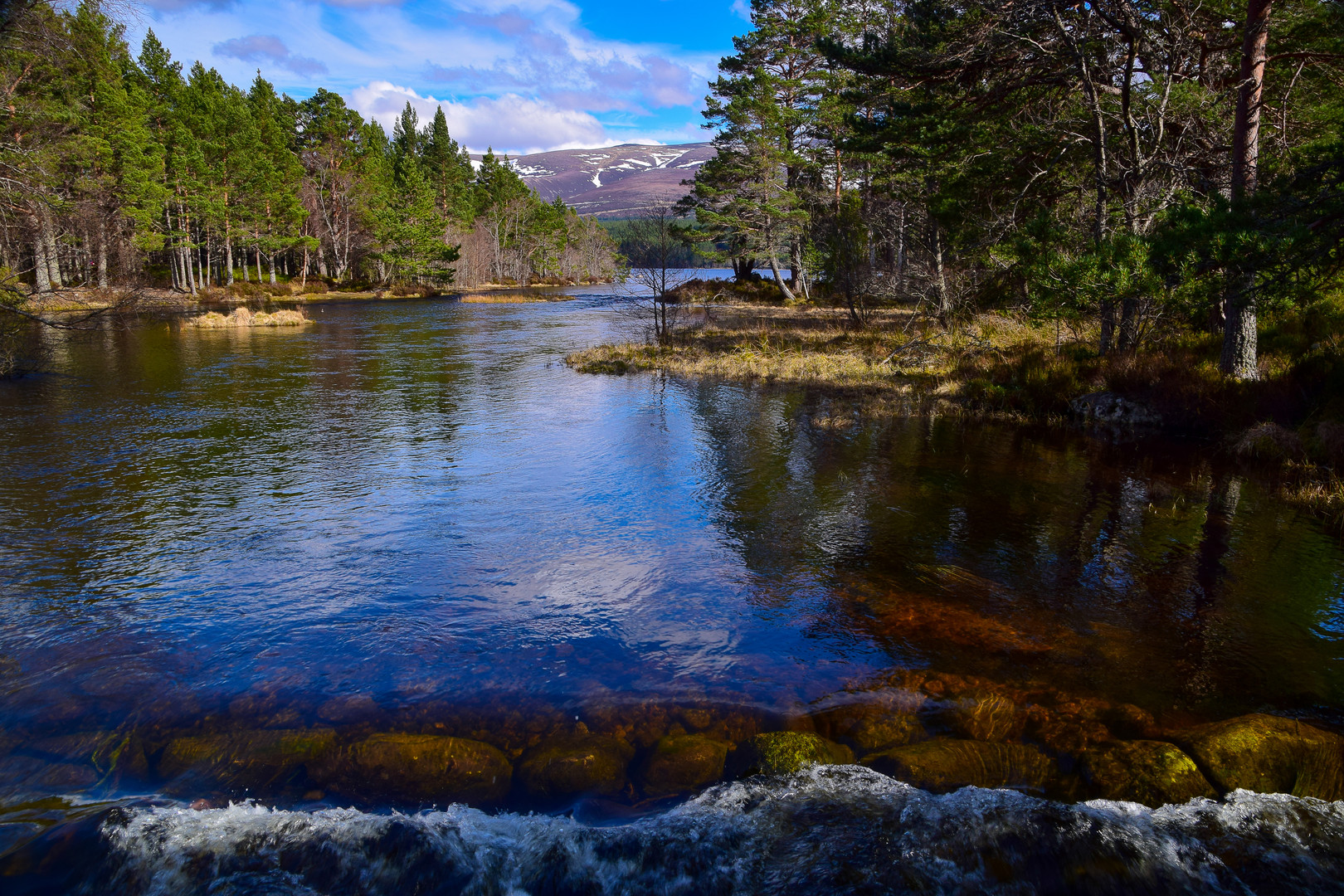 Loch Morlich_8991