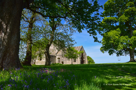 Dunglass Collegiate Church, Cockburnspath (0939)