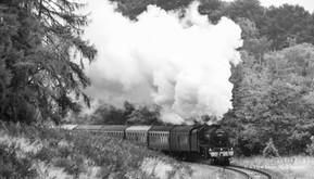 SRPS Railtours, BlackFive 44871 (8678a)