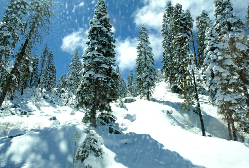 Lake Tahoe snow