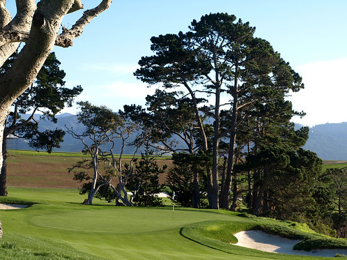 Pebble Beach Golf Course 5th green