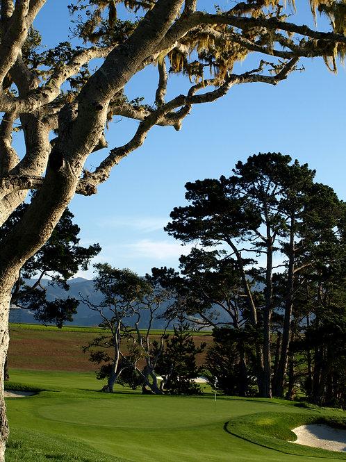 Pebble Beach Golf Course 5th green