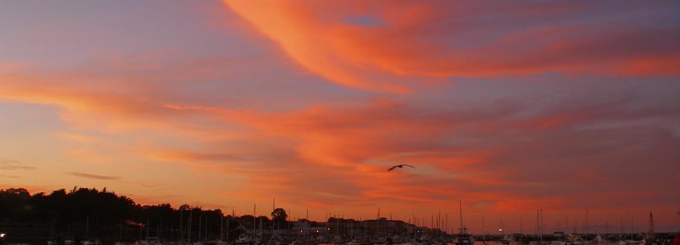 Monterey harbor sunset