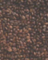 coffee%20bean%20lot_edited.png