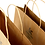 Thumbnail: Twisted Handle Kraft Bags