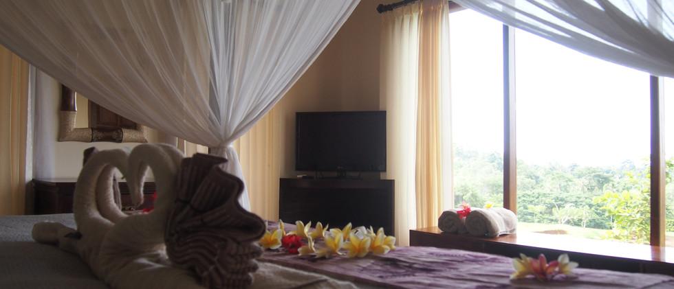 View from Jalak Putih bedroom