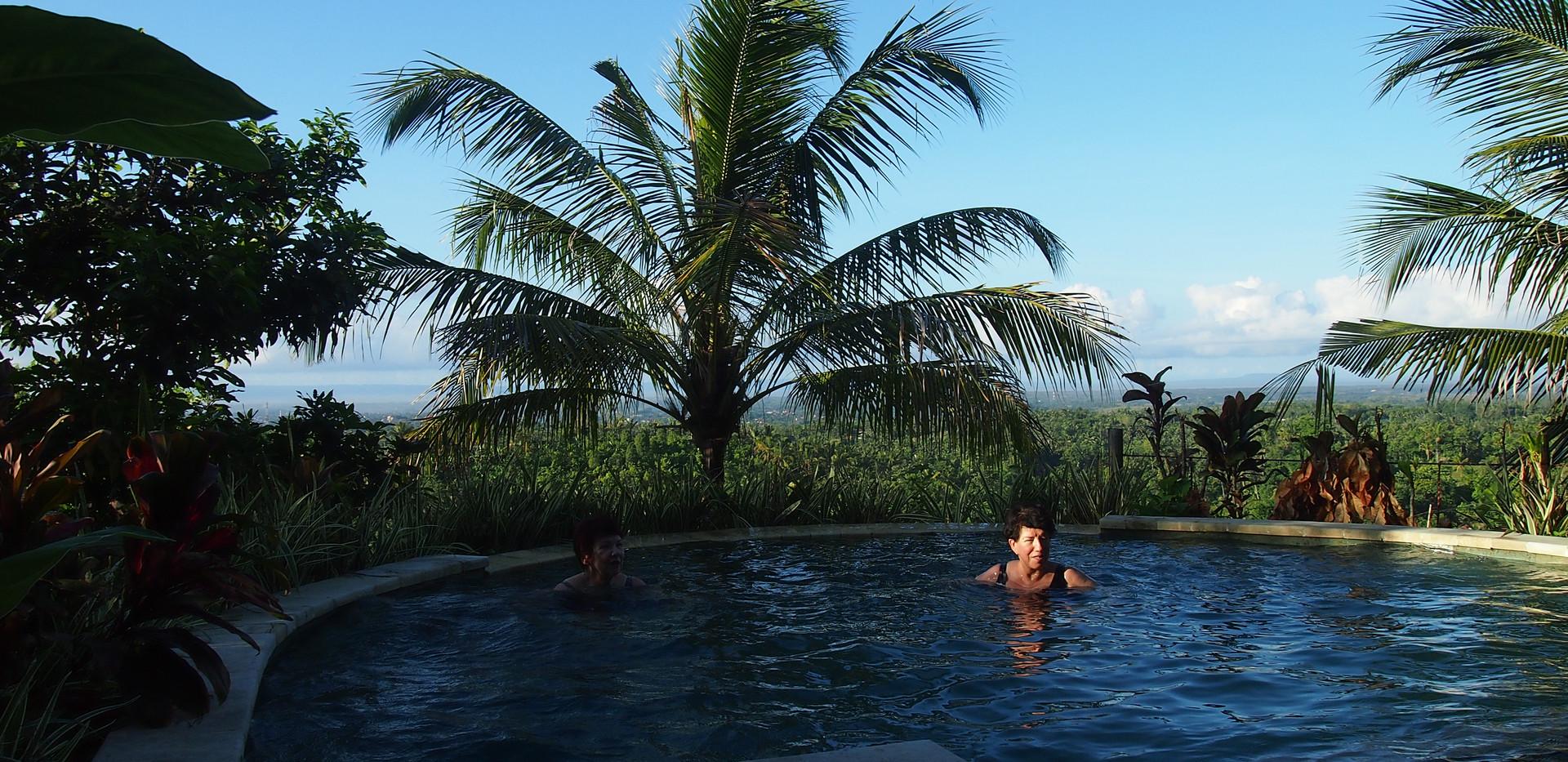 Capung_pool