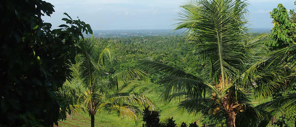 View from Capung balcony
