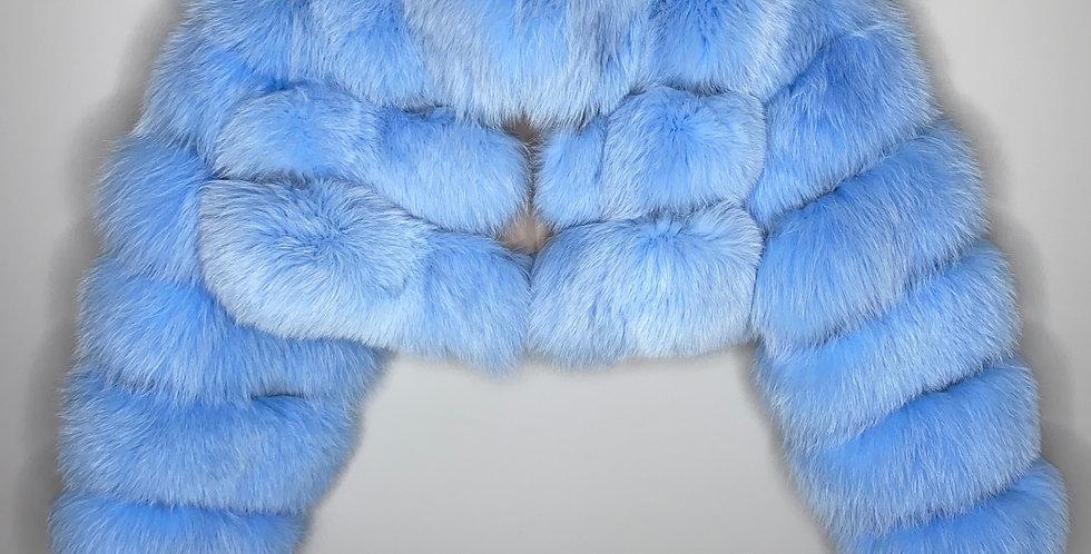 Powder Blue Fox