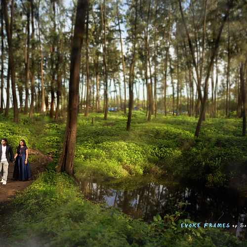 Vishal & Pratibha Prewedding