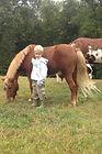 Boy & Pony.jpg