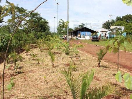 Sesc doa mudas que serão plantadas na Floresta das Águas