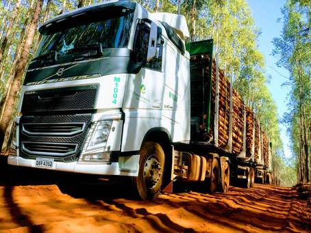 Eldorado Brasil abre novas vagas para motoristas em MS