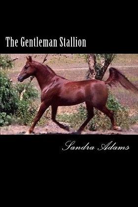 """""""The Gentleman Stallion"""""""