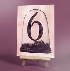Taxidermy Table Number