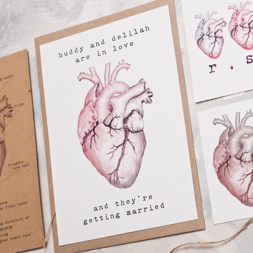 The Anatomical Heart Range