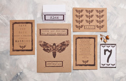 Pinned Moth Wedding Stationery