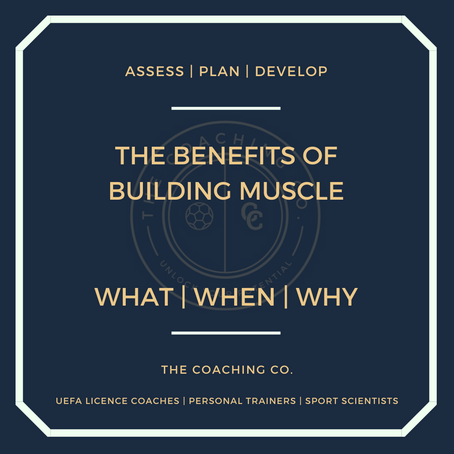 The Benefits of Building Muscle