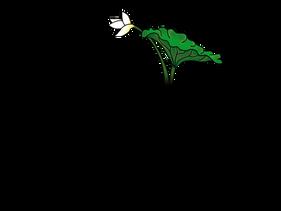 Logo Bortus