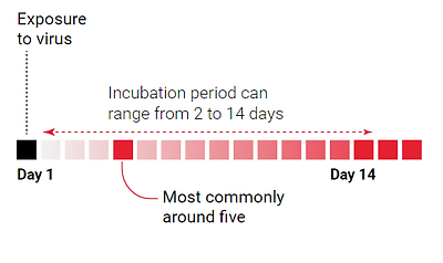 incubation period.PNG