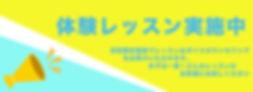 NV_web_4.jpg