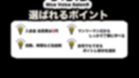NV_web_3.png