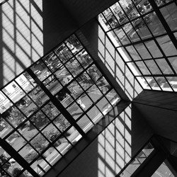 A SHADOW'S SHIFT Apple Store, NYC