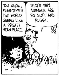 Animals and Our Mental Health