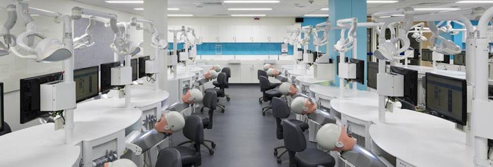Dental Programmes