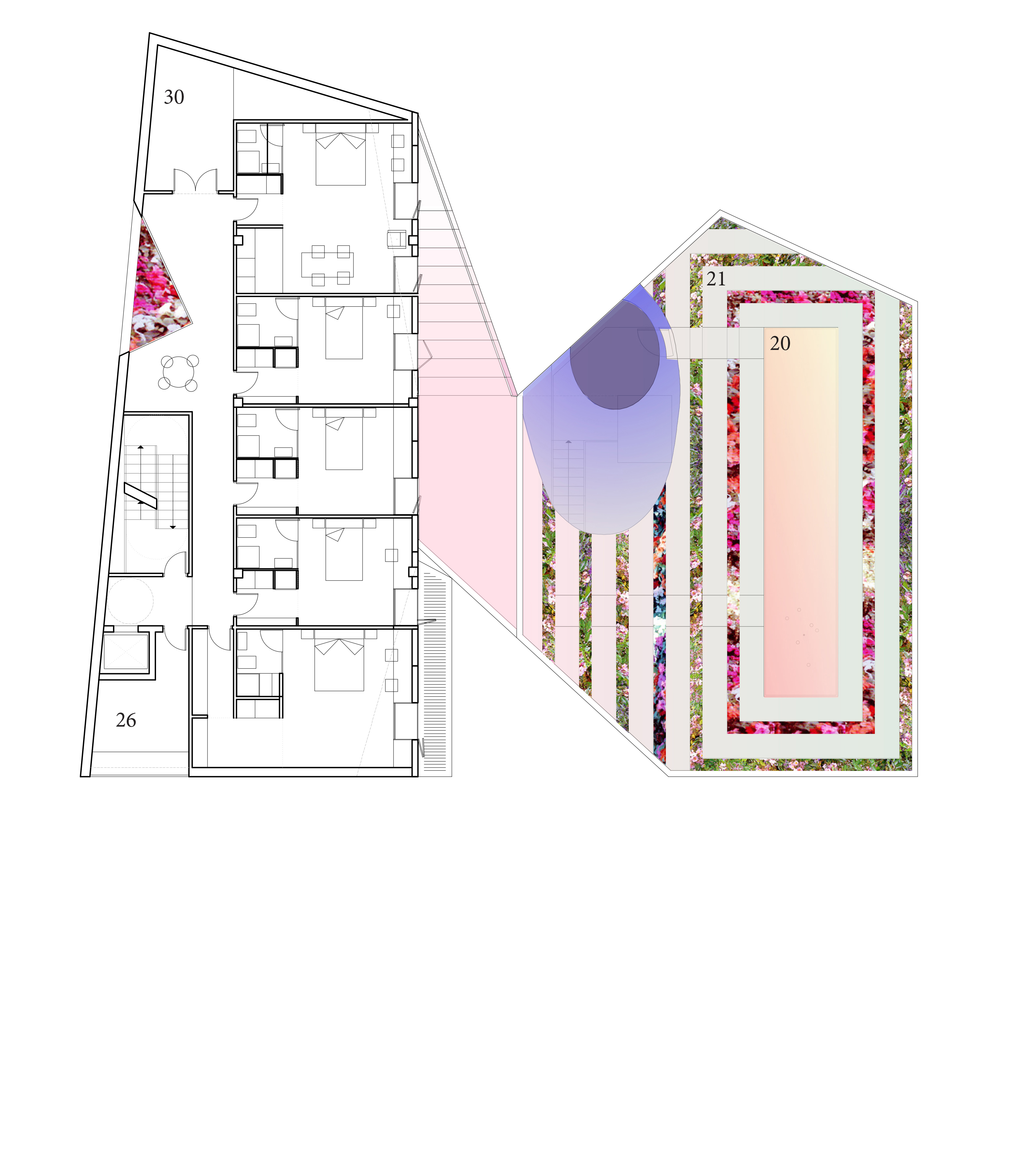 Second Floor Plan and Roof Plan