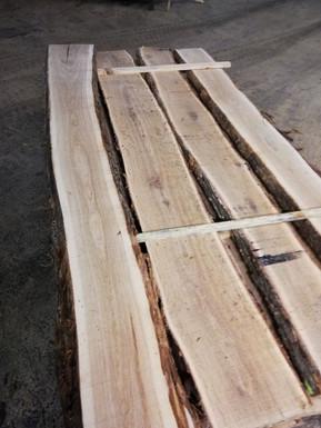 oak unedged sawnfresh timber