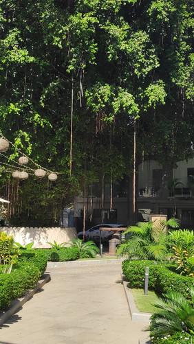 1592647521-Museum-Phnom-Penh.jpg