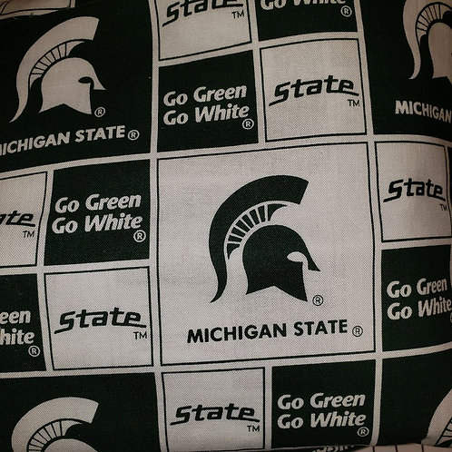 of Collegiate Jazzy Mask - Michigan State Spartans - with Filter Pocket