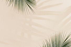 fresh-palm-leaves-beige.jpg