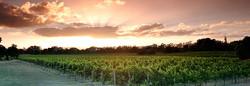 Millhouse Cottage Swan Valley Wineries (2).jpg