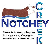 notchey creek logo 2_edited.jpg