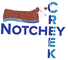 notchey creek logo2019 fb_edited.png