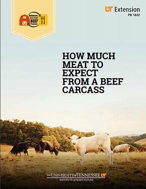 beef carcass brochure.JPG