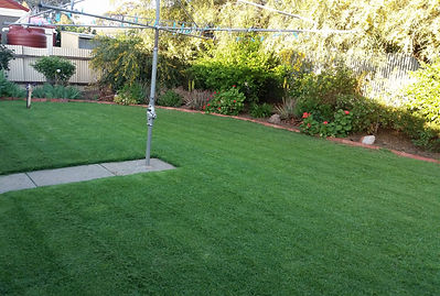 gardener in Mawson Lakes