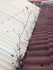 gutter cleaner in ovingham,gutter cleaner,gutter,cleaner,cleaning,clean,ovingham,business,company,in,near,roof,house,commercial,adelaide,hills,sa,local
