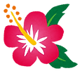 flower_hibiscus.png