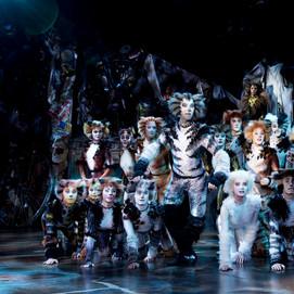 Cats Production Photo