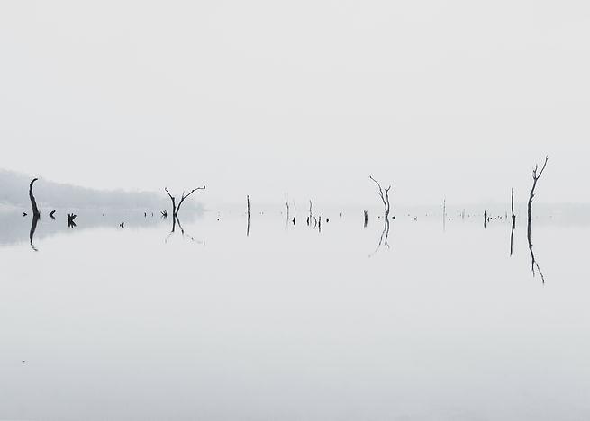 wide angle benbrook fog.jpg