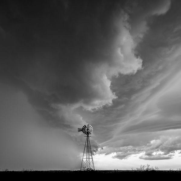 bnw windmill 20x20.jpg