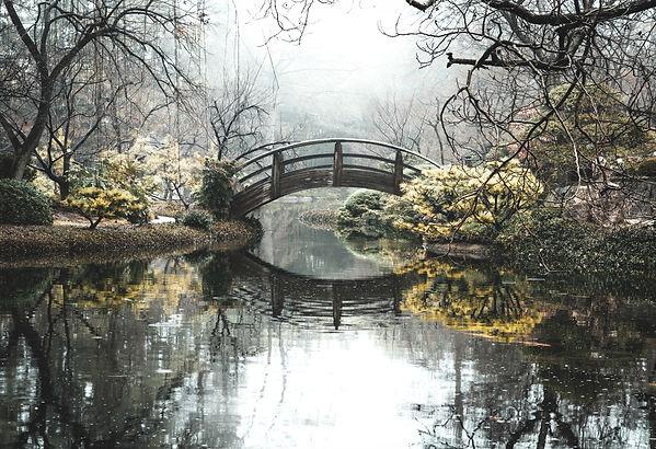 full scene bridge japanese gardens.jpg