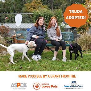 Truda adopted.png