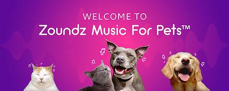Zoundz for partnership.jpg