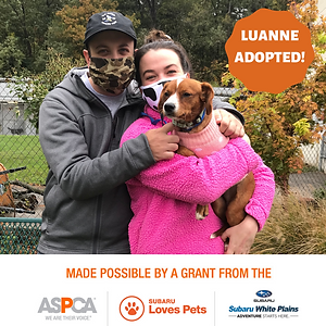 Luanne adopted.png