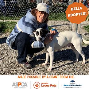 Bella adopted.png