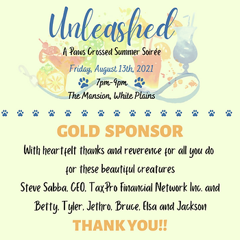 Steve Sabba Sponsorship.png